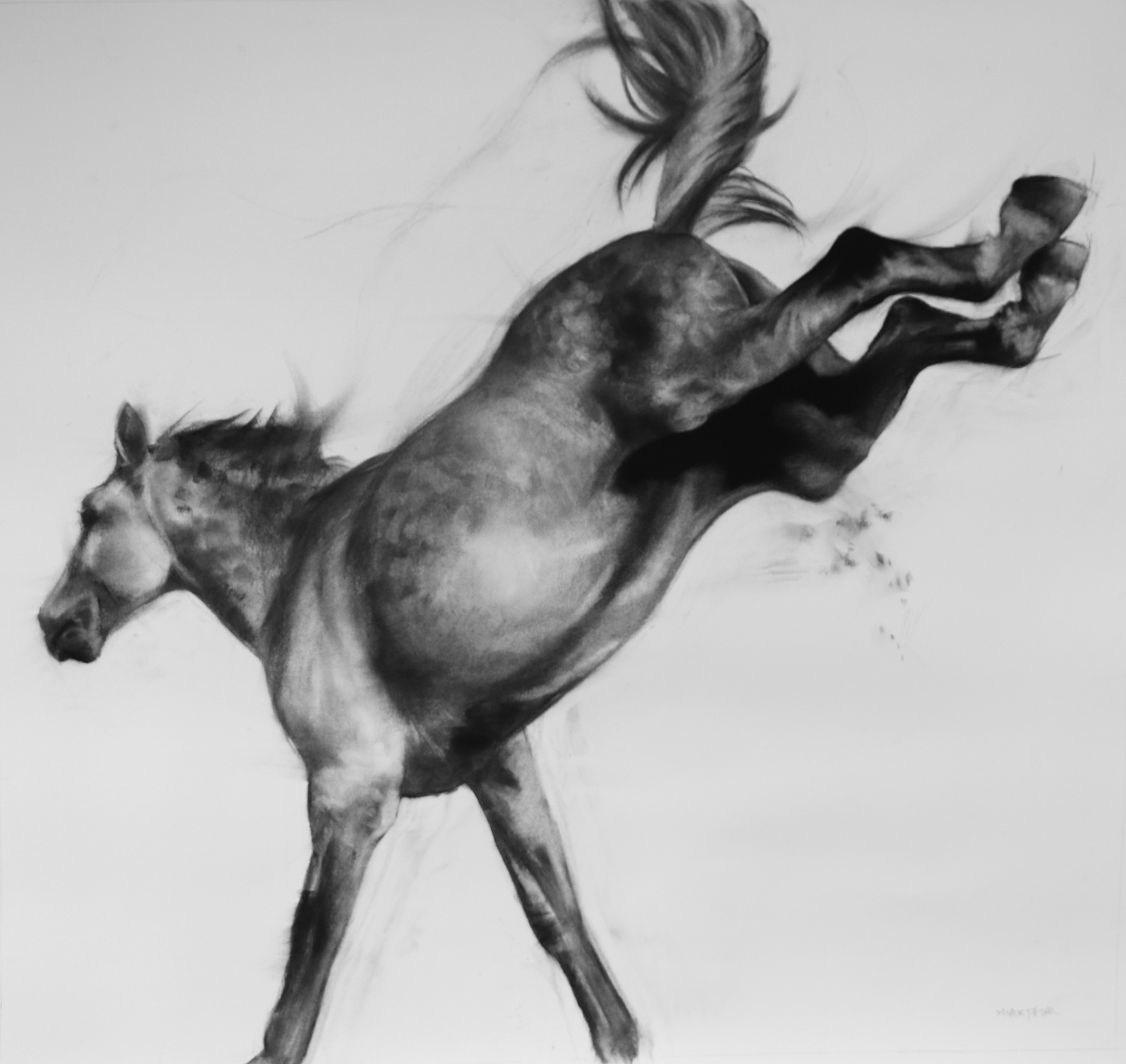 Patsy McArthur - Twister - Charcoal on paper